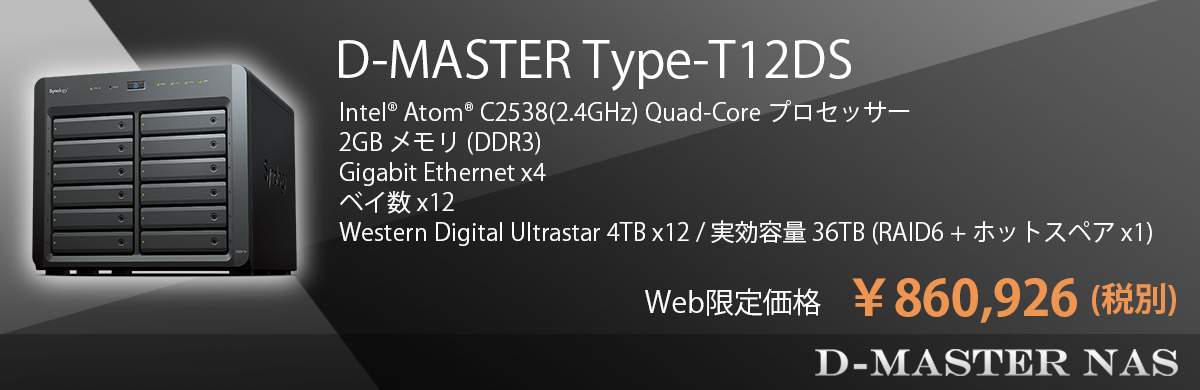 D-Master NAS Type-T12DS